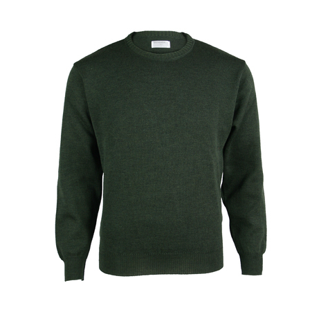 NZ Made Extrafine Merino Classic Fit Crew - Forest